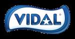 Logotipo Vidal sem fundo